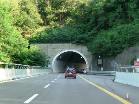 Teccio II Tunnel northern portal