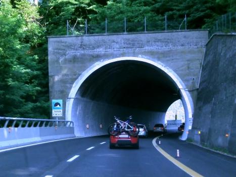 Tunnel Termoia