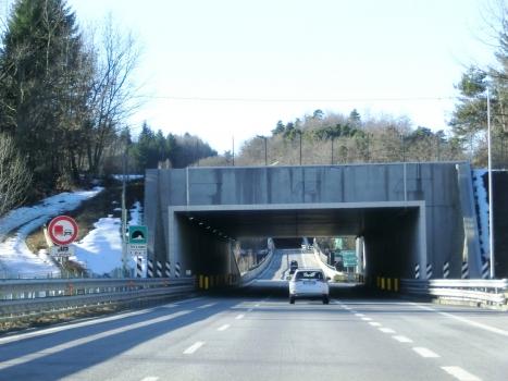 Tunnel Tiro a segno