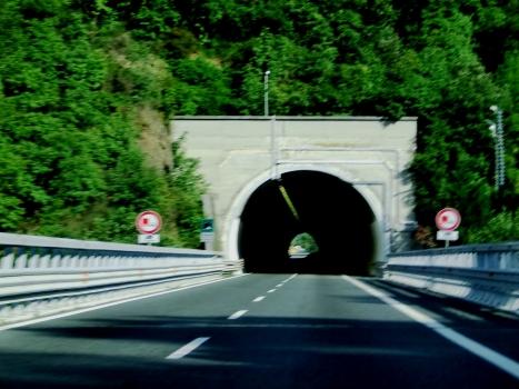 Vaneusa Tunnel southern portal