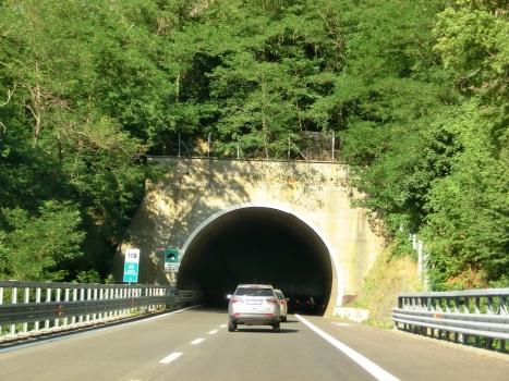Vapea Tunnel western portal