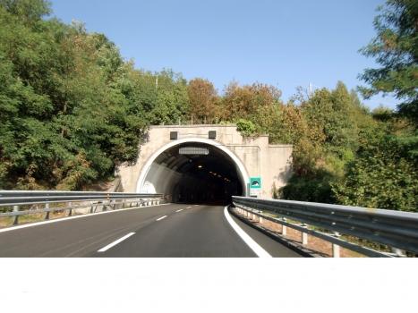 Tunnel Delle Piane