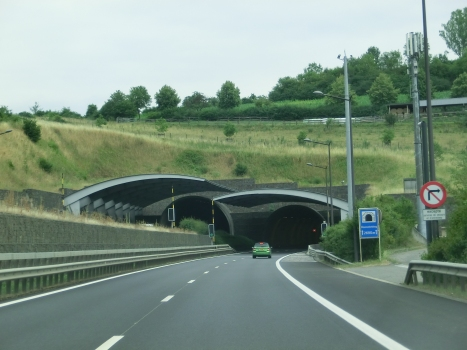 Gousselerbierg Tunnel northern portals