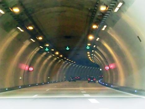 Tunnel Grouft