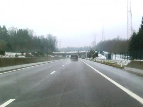 Rengelbur Ecoduct