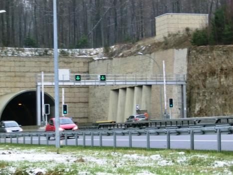 Tunnel Stafelter