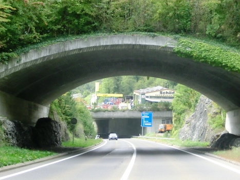 Brienzwiler Wildlife Crossing and, on the backyard, Muhlefluh Tunnel eastern portals