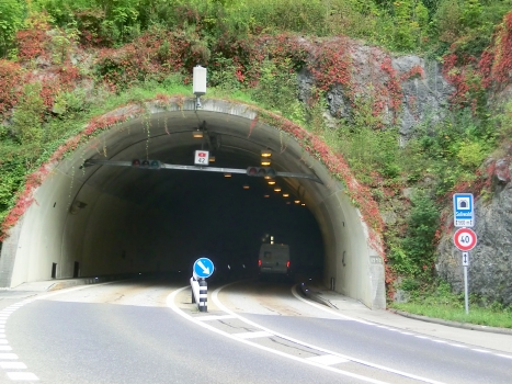 Tunnel Soliwald
