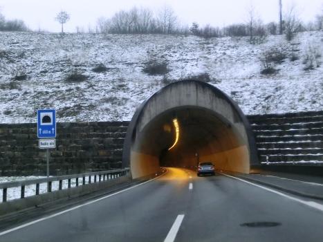 Tunnel Pellinger Berg
