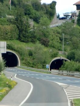 Chauderon Tunnel northern portals