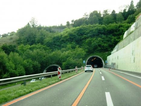 Chauderon Tunnel southern portals
