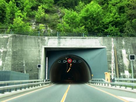 Tunnel de Glion