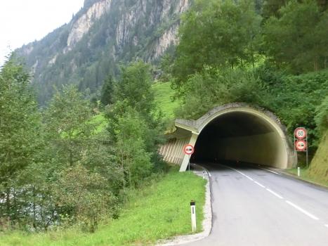 Tunnel Saustein