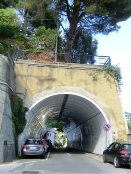 Tunnel de Gioia
