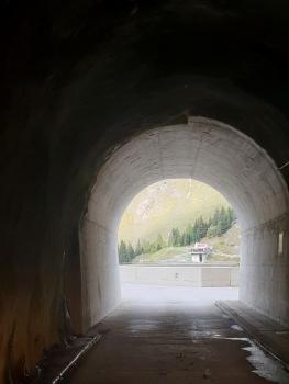 Garzott Tunnel western portal