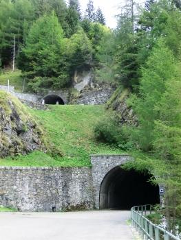 Luzzone I Tunnel western portal and, above, Luzzone III Tunnel western portal