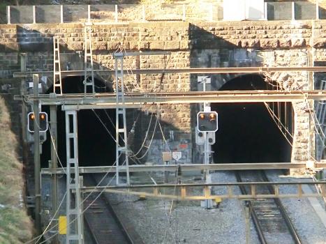 Tunnel Massagno