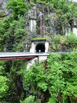 Tunnel Mergoscia