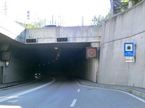Untereisenbahn Tunnel eastern portal