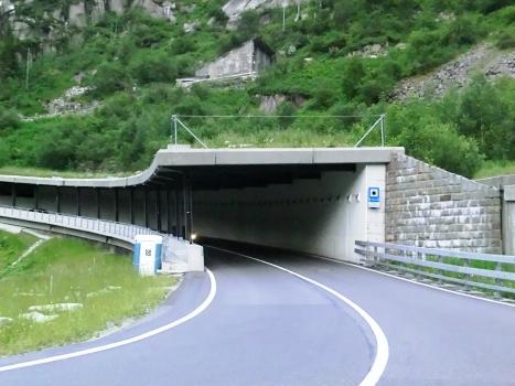 Tunnel Bruggwaldboden-Fodegg
