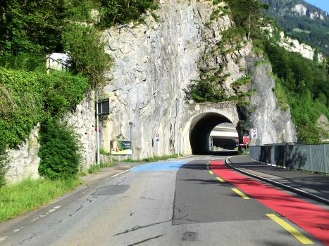 Brunnen Tunnel northern portal