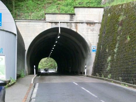 Tunnel Verzasca 3