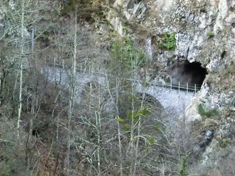 Eisenbahntunnel Riale di Verdasio