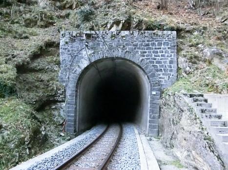Tunnel de Vignascia