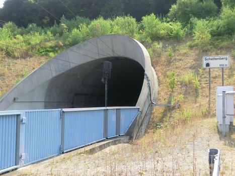 Tunnel Schellenberg