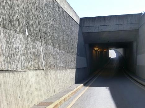 Untereisenbahn Tunnel branch portal