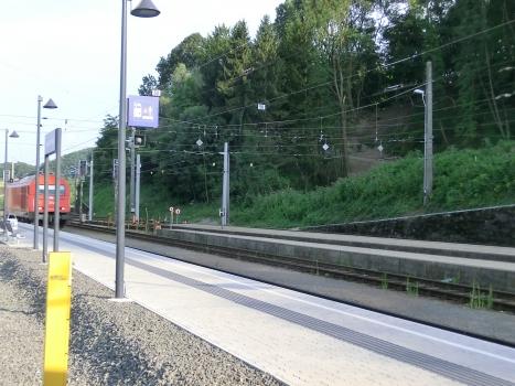 Bahnhof Spielfeld-Straß