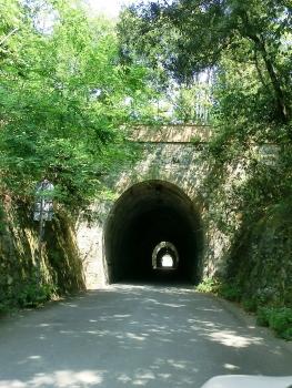 Tunnel Larestra 2
