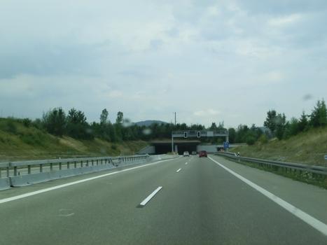 Tunnel Reinertshof
