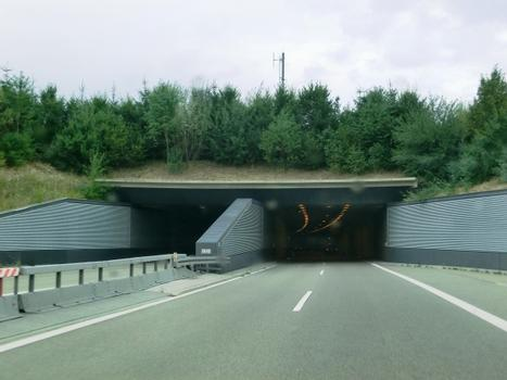 Reinertshof Tunnel