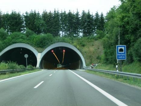 Tunnel Herfatz northern portals