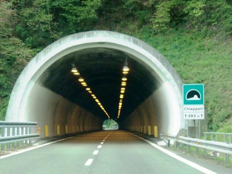 Chiappeti Tunnel western portal