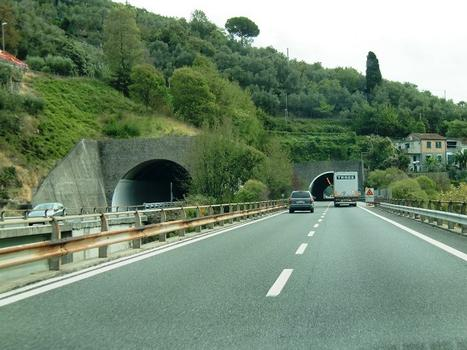 Ciapon Tunnel western portals