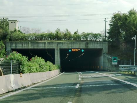 Malandrone Tunnel northern portals