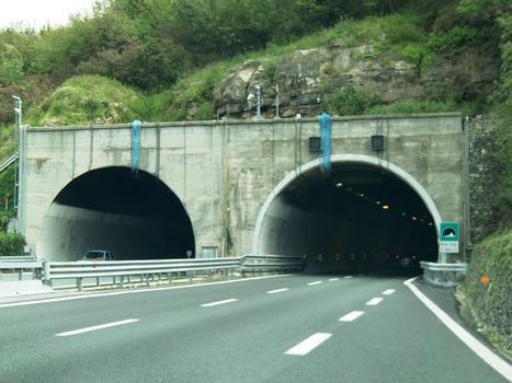 Monte Giugo Tunnel western portals