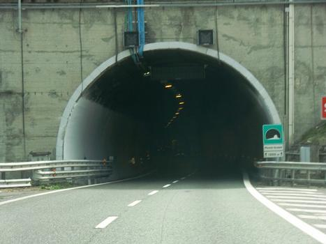 Monte Quezzi Tunnel western portal