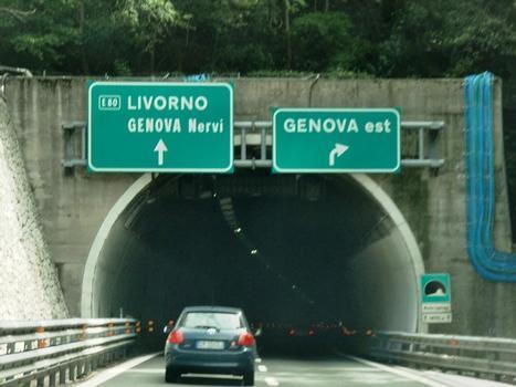 Monte Sperone Tunnel western portal