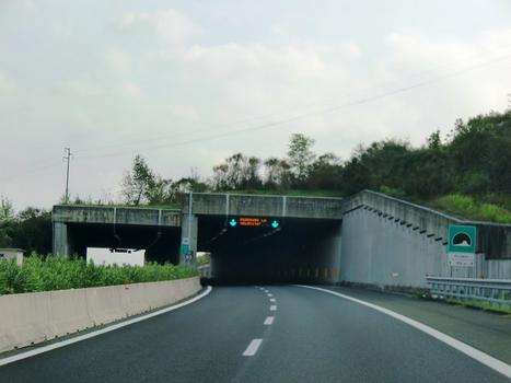 Orciano Tunnel northern portals