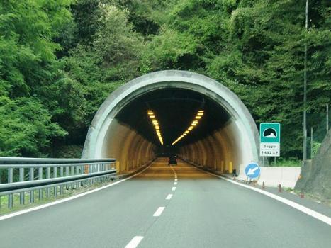 Soggio Tunnel western portal