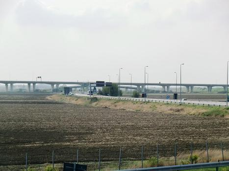 Coltano Viaduct at Collesalvetti A12 exit