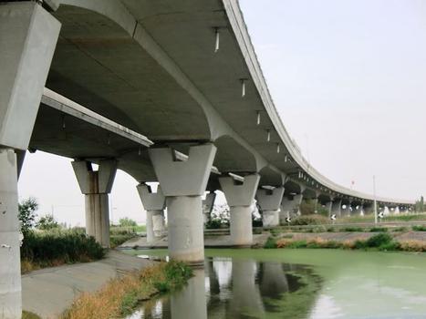 Coltano Viaduct
