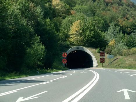 Mont Chemin tunnel, southern portal