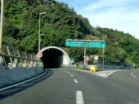 Tunnel Villa Tassara