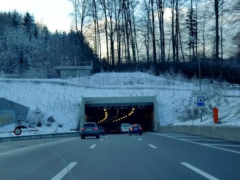 Tunnel de Aescher