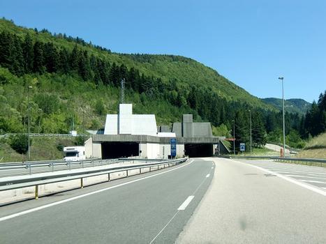 Chamoise tunnel, western portals