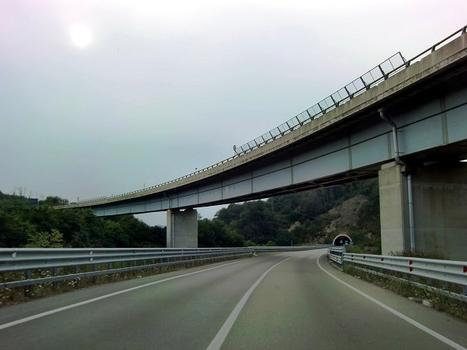 Bormida di Mallare Sud Viaduct from SS29-NSA338. In the background, Vispa Tunnel southern portal